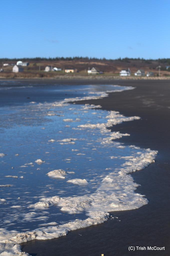 Winter NS Beach 3