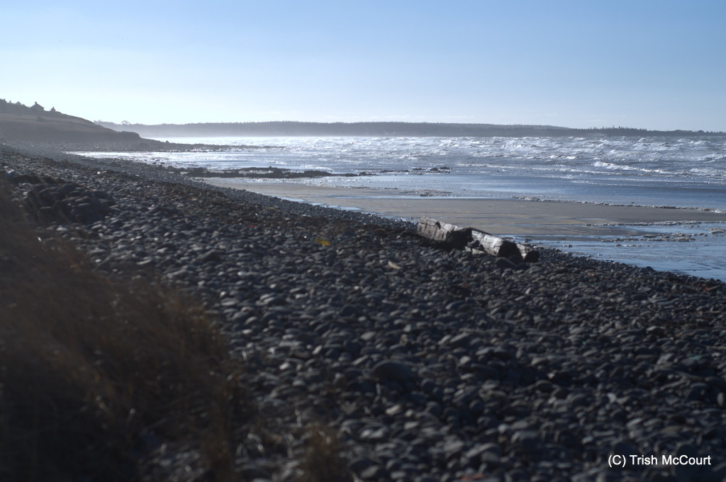 Winter NS beach