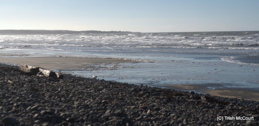 Winter NS Beach 4